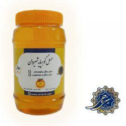 عسل جنگل و کوهپایه شیروان